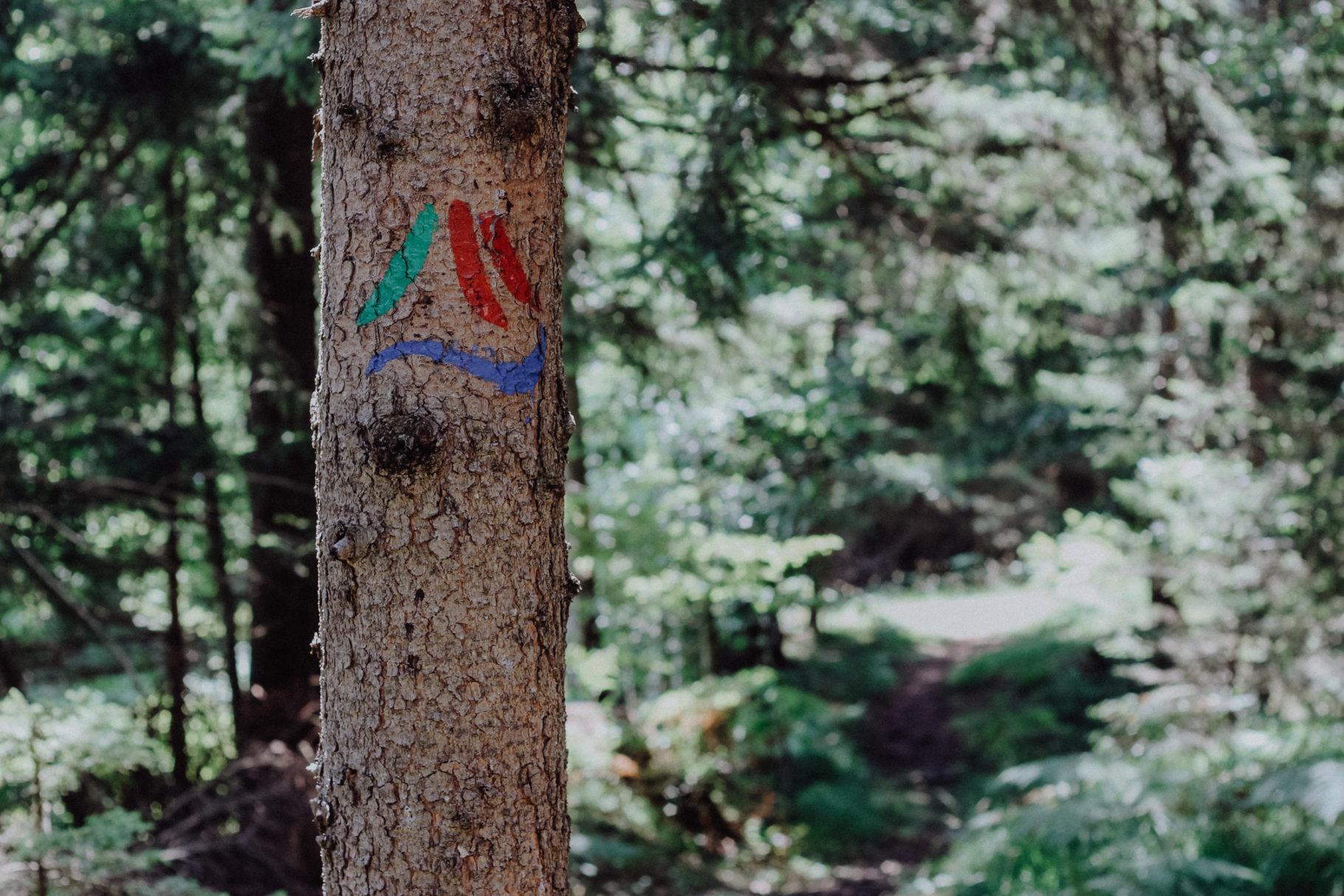 Der Alpe Adria Trail mit Zelt: Die Etappen 18-20 in Italien