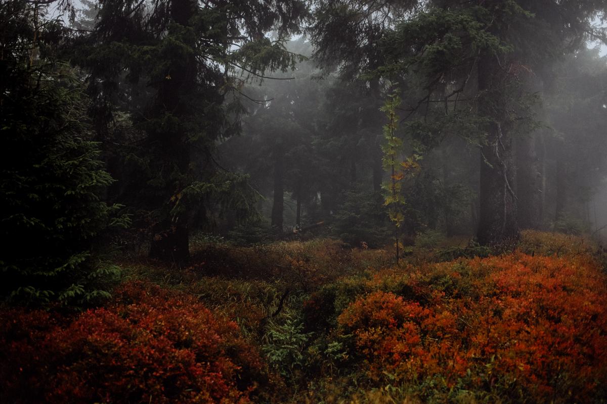 5 mystische Orte im tschechischen Erzgebirge
