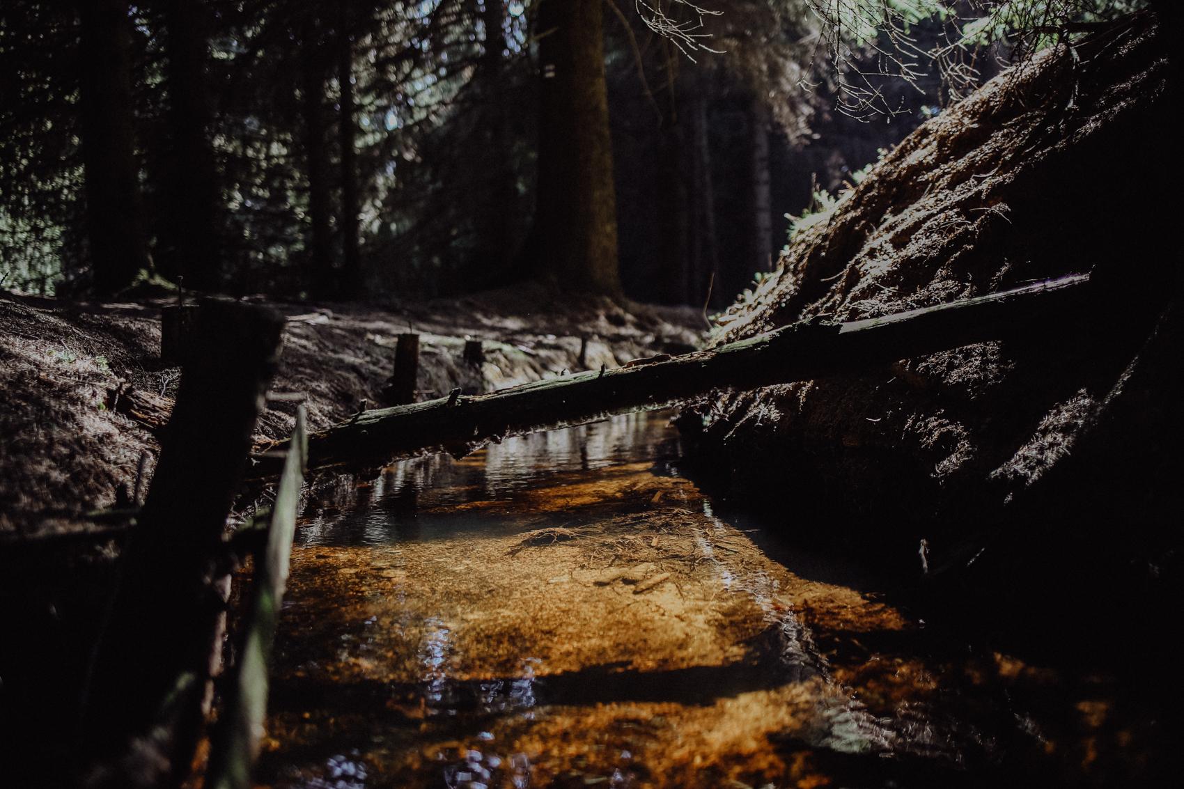 """Der Grüne Graben Der Grüne Graben ist ein schmaler, künstlicher Flusslauf von 8 Kilometern Länge und wurde bereits im 17. Jahrhundert angelegt, um mit dem abgeleiteten Wasser der Schwarzen Pockau das """"Kunstgezeuge"""" der Pobershauer Bergwerke anzutreiben. """"Kunstgezeuge"""" haben in diesem Fall aber nichts mit Kunst zu tun, sondern meinen die Maschinen der Bergarbeiter wie beispielsweise Wasserräder. Heute treibt der plätschernde Bach immer noch Wasserräder an - allerdings nur noch die kleinen, die entlang des Weges immer wieder im Wasser hängen und dort fröhlich vor sich hin kreiseln."""