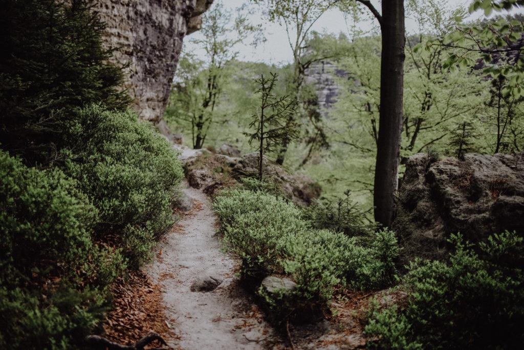 Raubschloss & Goldsteig: Die wohl schönste Wanderung in der Sächsischen Schweiz