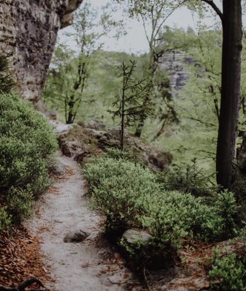 Wandern Sächsische Schweiz Goldsteig