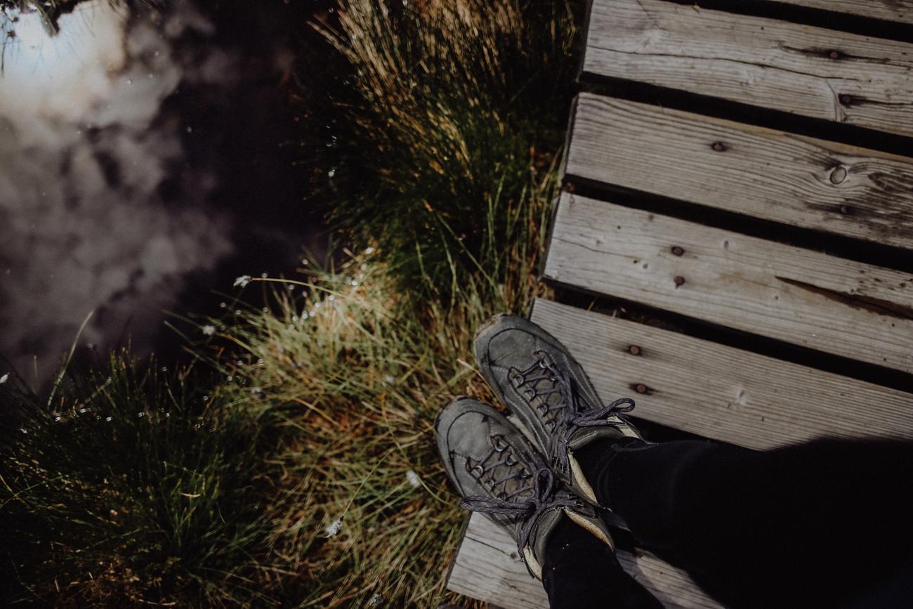 Die Harzer Moore Die Harzer Moore zählen zu den besterhaltensten Deutschlands, da sich hier das Torfstechen aufgrund der feuchtkalten Witterung und der damit einhergehenden langen Trocknungszeit des Torfs nicht lohnte. Knapp 2000 ha des Nationalparks sind vermoort. Grundlage hierfür bilden die unterschiedlichen Torfmoose, die bis ins Unendliche wachsen und zeitgleich am Grund absterben. Da durch die Feuchtigkeit keine vollständige Zersetzung stattfinden kann, entwickelten sich so über Jahrtausende meterdicke Moorkörper. Die Vegetation, die jetzt auf den Mooren wächst, hat demnach keine Verbindung zum Grundwasser mehr und nährt sich nur vom Regenwasser. Dabei können die Torfmoose das 25-fache ihres Trockengewichts an Wasser aufnehmen, sodass sie wie riesige, mit Regenwasser gefüllte Schwämme in der Landschaft liegen.