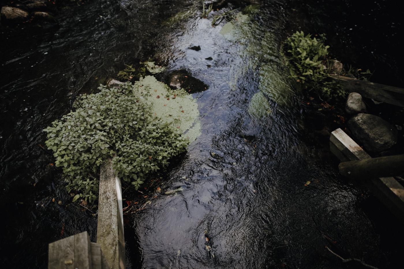 Bedrohte Art: Unio Crassus Im Bereich des Naturschutzgebietes lebt eine besonders seltene Art: Die kleine Flussmuschel. Obwohl die Muschel fast überall in Europa verbreitet ist, ist ihr Bestand bedroht. Flussbegradigungen und der hohe Nitratgehalt in den Flüssen durch die Landwirtschaft lassen die Bestände stetig schrumpfen. Problematisch ist, dass die Warnow auch im Bereich des Naturschutzgebietes mit Kajaks befahren werden kann, was durch die wilden, natürlichen Flussläufe aber gar nicht mal so einfach ist. Wenn dann die Paddel in den Boden eingestochen werden oder die Kajaks an flachen Stellen aufsetzen, werden immer wieder Muscheln zerstört. Deshalb einigte man sich mit den Kajakanbietern der Region auf die freiwillige Regelung, unter 30 cm Wasserstand keine Kajaks mehr aufs Wasser zu lassen. Besser wäre es jedoch, im Bereich des Warnowtals überhaupt nicht mit dem Kajak zu fahren und lieber andere Orte außerhalb der Naturschutzgebiete für Kajaktouren zu wählen.