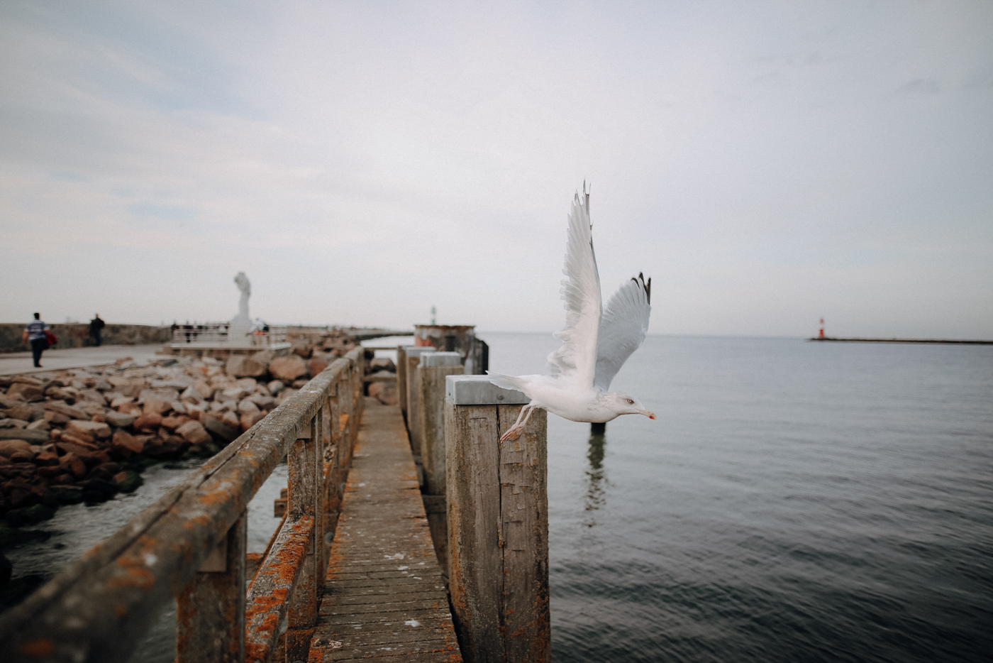 Frische Meeresbrise: Wandern auf den Thalasso-Wegen bei Warnemünde