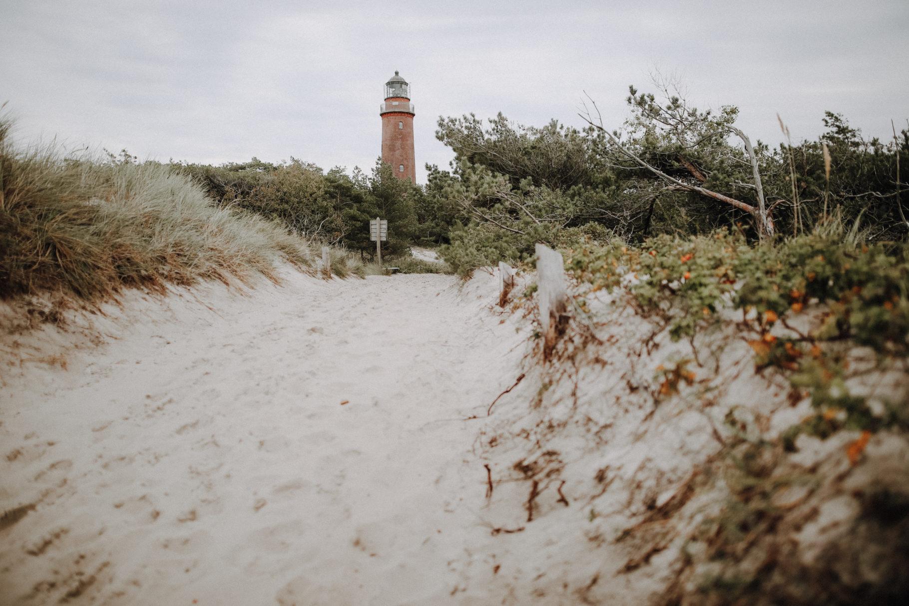 Herbstwandern auf dem Darß: Auf dem Leuchtturmweg zu den Hirschen