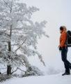 Sächsische Schweiz Winter Wandern Gohrisch