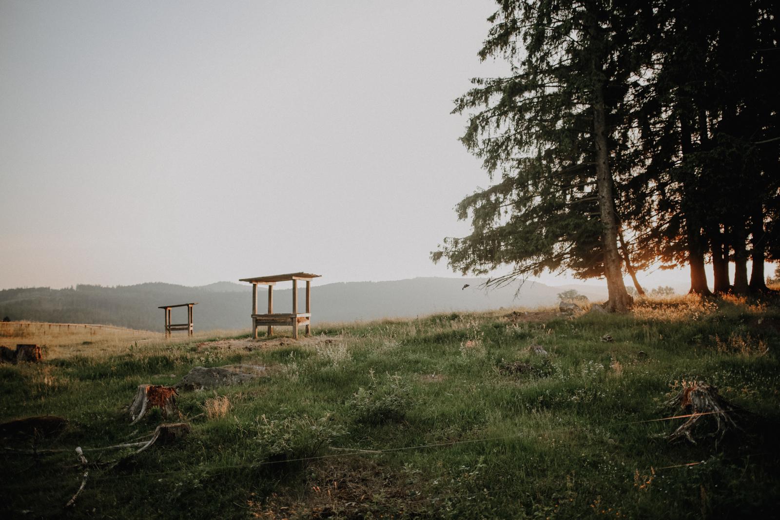 Sommer im Bayerischen Wald: 5 Geheimtipps für die Arber-Region