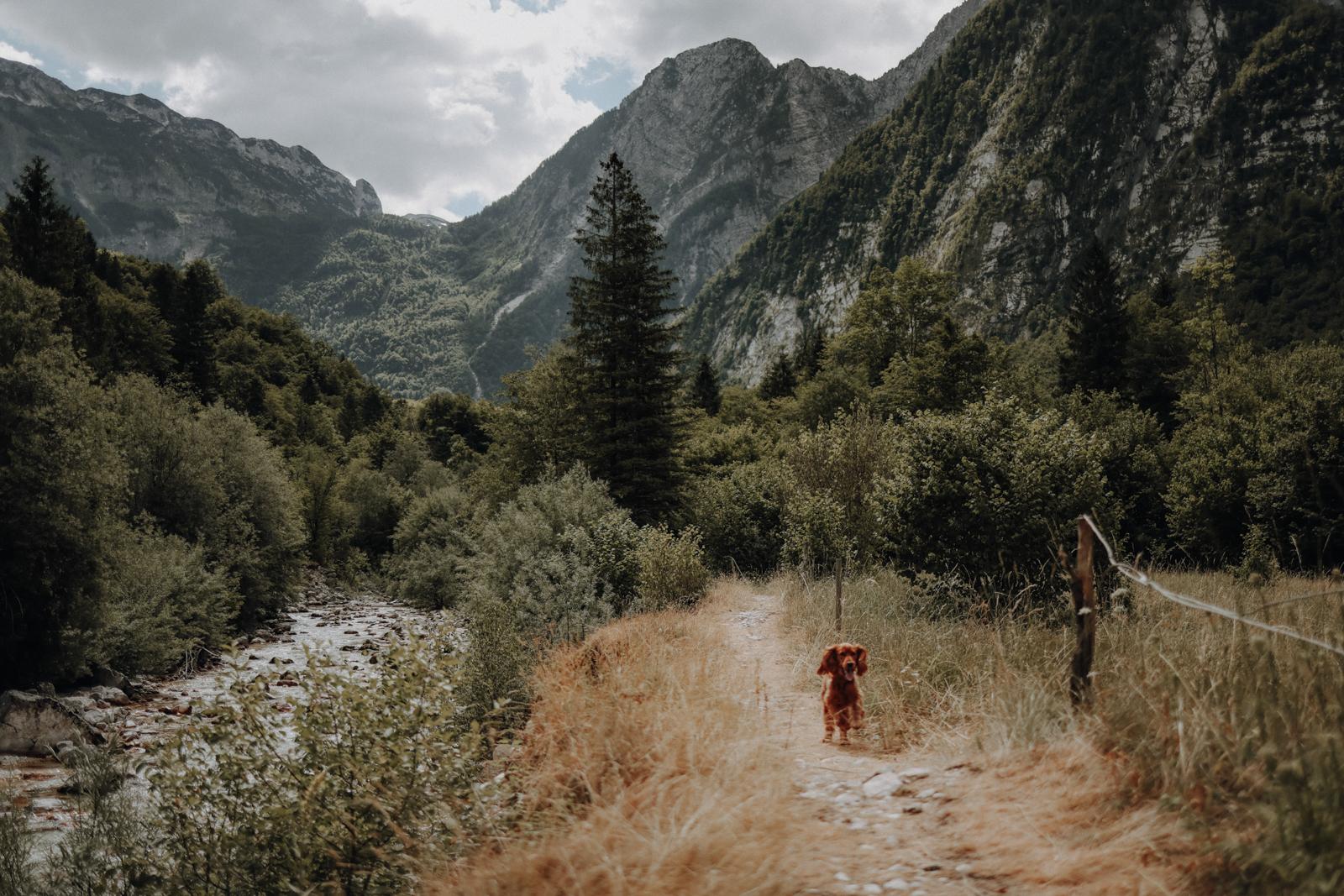 Wandern Slowenien Šunikov vodni gaj